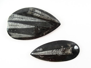 Crystalized Fossil Paperweight Pair