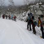 Gruppo Snowboard si inoltra nel boschetto  (BiG)