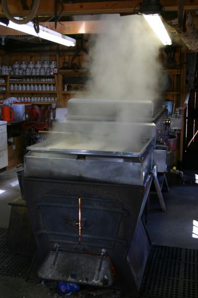 Maple sap evaporator