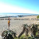 DSC_1513.thumb.jpg