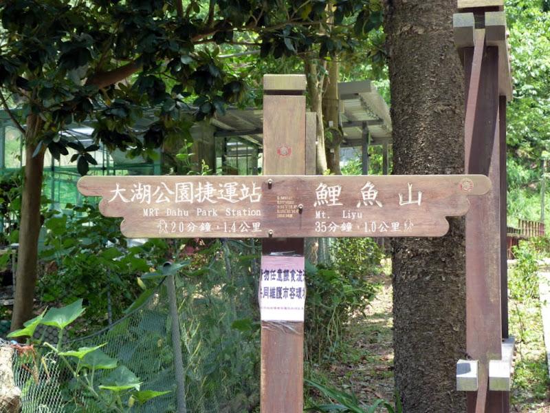 Taipei. Promenade de santé au départ de la station de métro DAHU       06/13 - P1330193.JPG