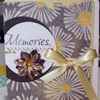 FS1117-C Memories Aprils 2011