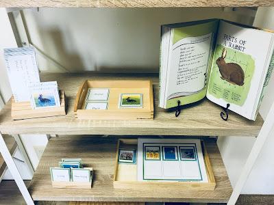 Montessori Language/Science Shelves with printable activities