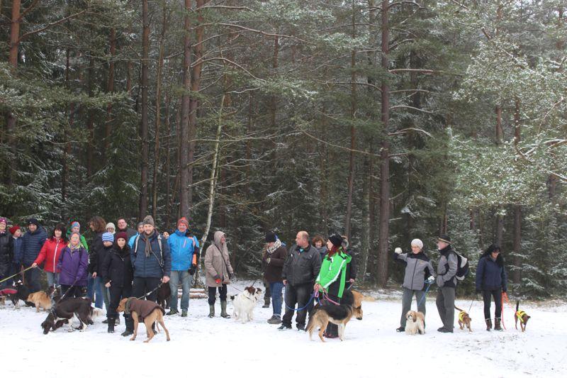 01. Januar 2016: Neujahrswanderung ins Waldnaabtal - IMG_1569.JPG