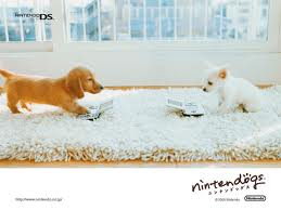 how to go to the park in nintendogs cats