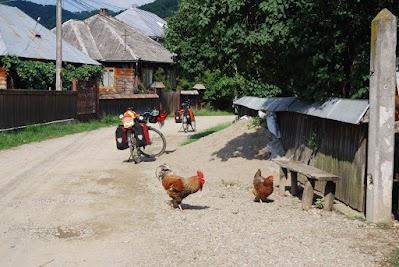 Hahn und Henne auf der Dorfstraße von Vadu Izei