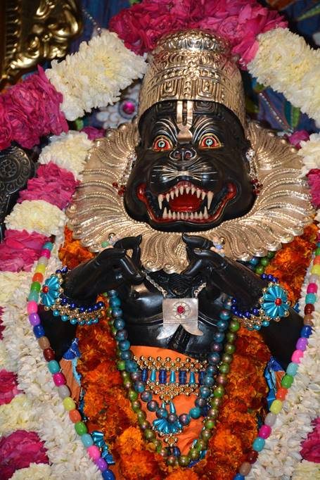 ISKCON Ujjain Deity Darshan 03 Feb 2016 (1)