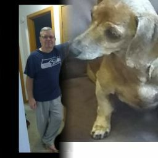 user Dave Watson apkdeer profile image