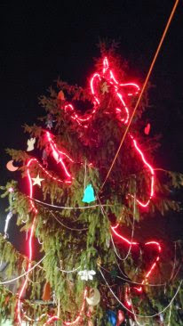 Mindenki karácsonyfája - 63715_486882944696348_149115000_n.jpg