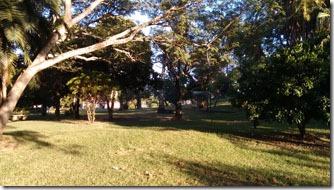 area-verde-arapey