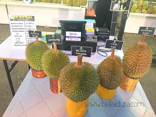 jenis - jenis durian