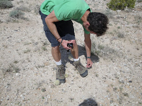 Picking cholla spines out of my boot.
