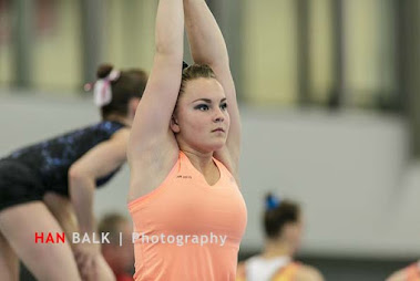 Han Balk Fantastic Gymnastics 2015-2401.jpg