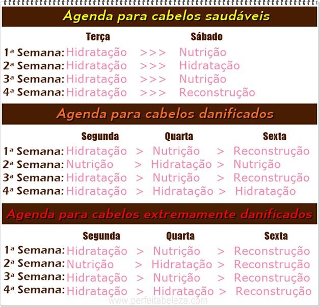 tabela de cronograma capilar