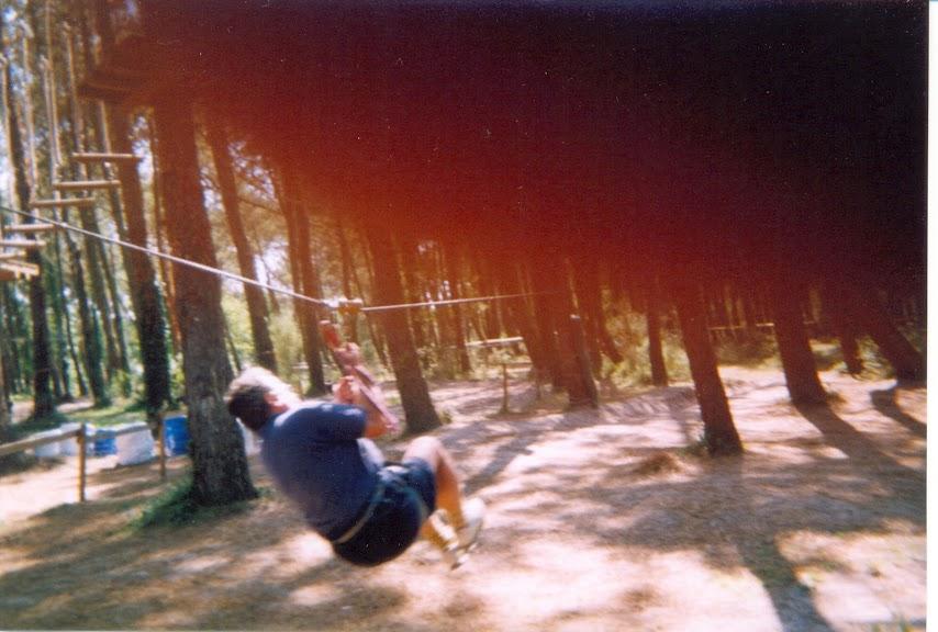 Dans les arbres Dans+les+arbres-02