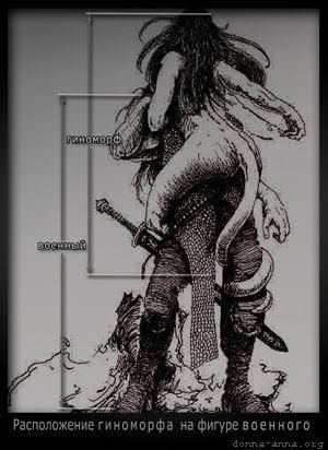 Гиноморф на фигуре военного