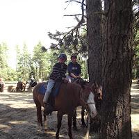 Camp Baldwin 2014 - DSCF3680.JPG