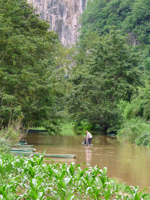 Chine . Yunnan BA MEI 2 - P1260944.JPG