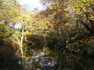 DSCF2630 Basingstoke Canal near Sandy Hill Bridge