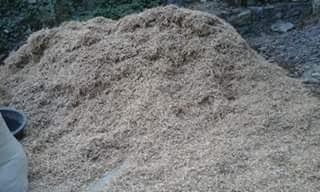 Nutrisi Rendeng Kedelai dan Jerami Kacang Tanah