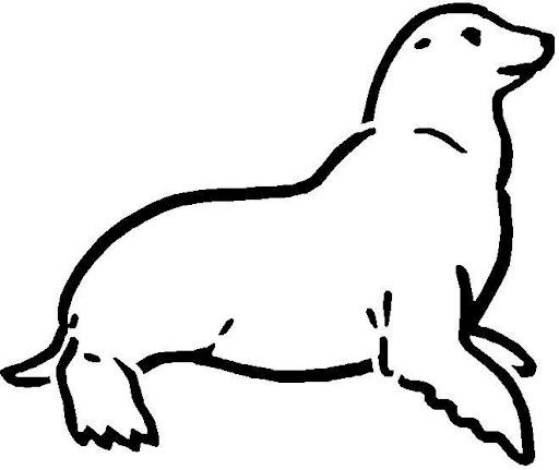 Imagenes de lobos marinos para colorear - Imagui