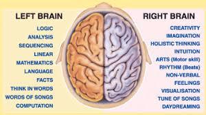 Brain lateralism