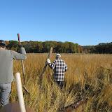 Guilford Salt Meadow Sanctuary Osprey Platform - sfs%252C10-25-09%2Bosprey%2Bplatform%2Binstall%252C008.JPG