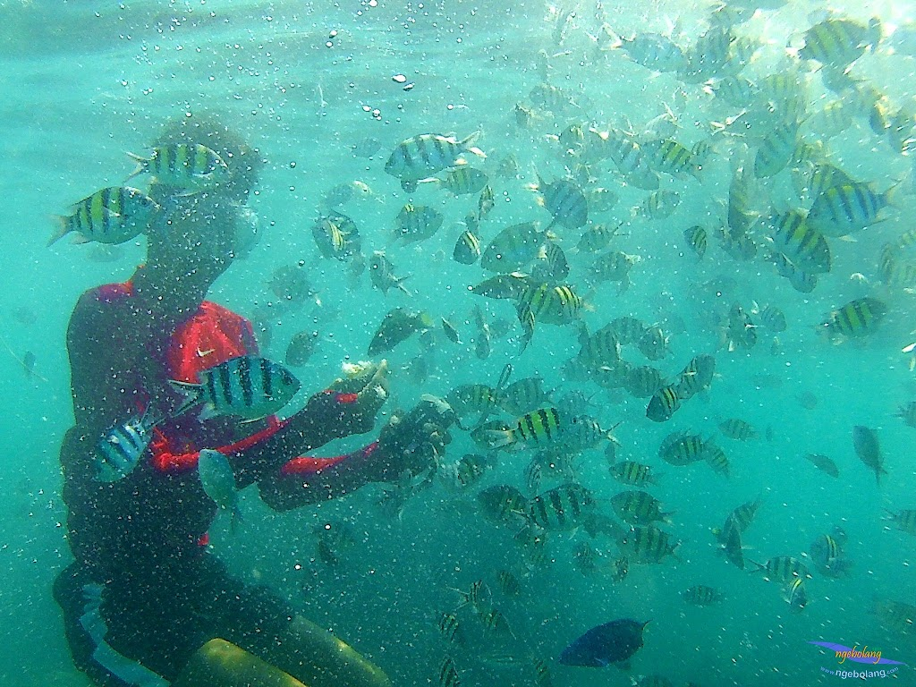 family trip pulau harapan, 1-2 agustus 2015 gopro 21