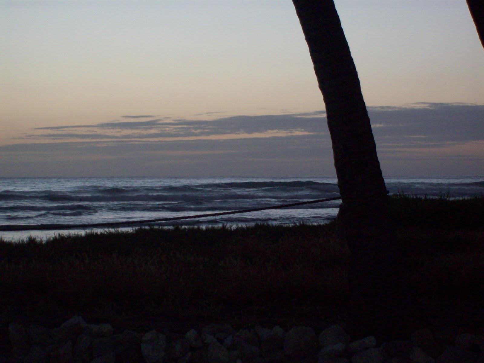 Hawaii Day 3 - 114_1163.JPG