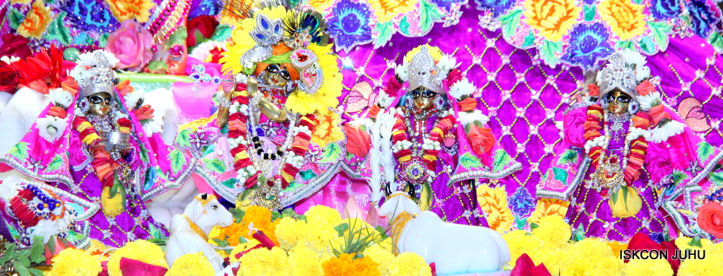 ISKCON Juhu Sringar Deity Darshan on 29th Sep 2016 (13)