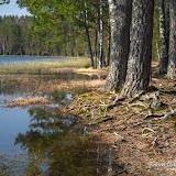 Озеро Дришкина