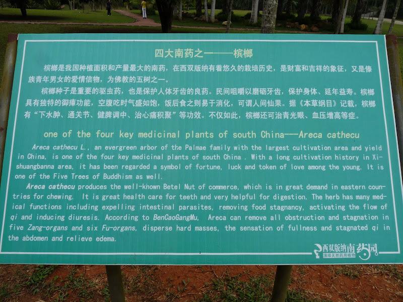 Chine .Yunnan . Lac au sud de Kunming ,Jinghong xishangbanna,+ grand jardin botanique, de Chine +j - Picture1%2B683.jpg