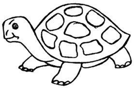tortugas para colorear (3)