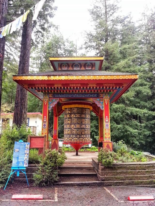 Land of Medicine Buddha