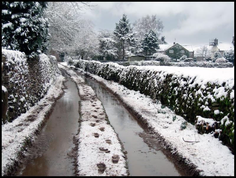 Snow2-2
