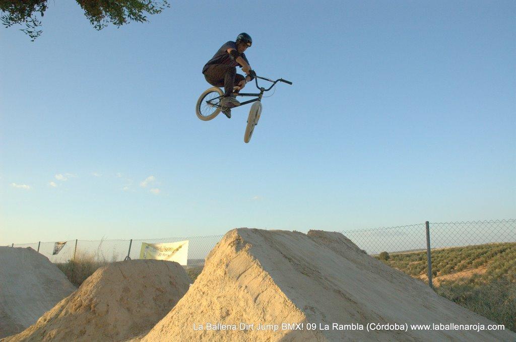 Ballena Dirt Jump BMX 2009 - BMX_09_0133.jpg