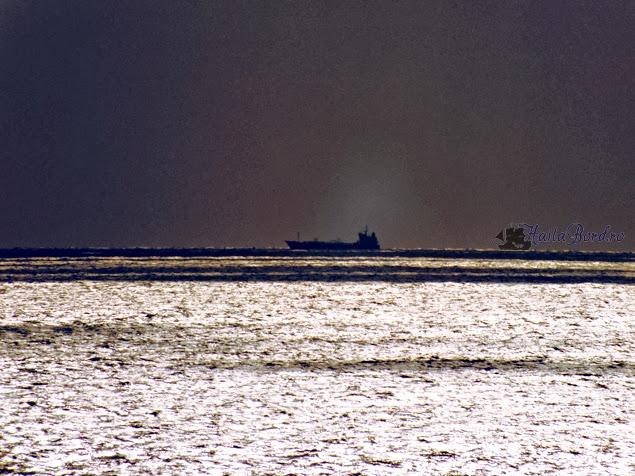 vapor marea neagra august 2013