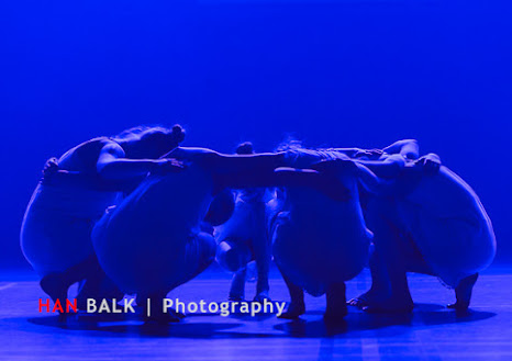 Han Balk Voorster Dansdag 2016-4232.jpg