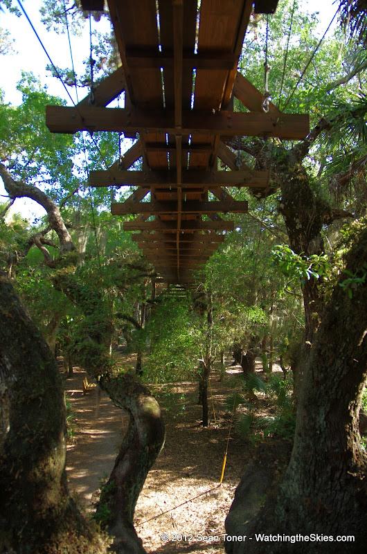 04-06-12 Myaka River State Park - IMGP9896.JPG