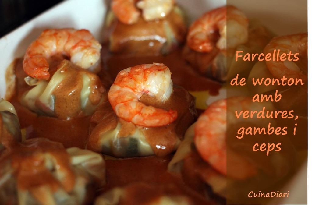 [1-4-Farcellets+wonton+verdura+gambes+ceps-cuinadiari-ppal+2%5B3%5D]