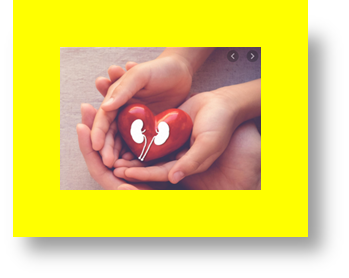 kidney transplant in child why would a child need a kidney transplant can a child survive with one kidney kidney transplant donor child to parent kidney transplant from child to parent kidney transplant in saudi arabia kidney transplant in spanish what age can a baby have a kidney transplant
