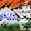 Kashyap Vyas's profile photo