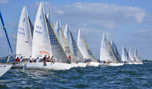 J/24s sailing Midwinter USA Championships- Tampa, FL