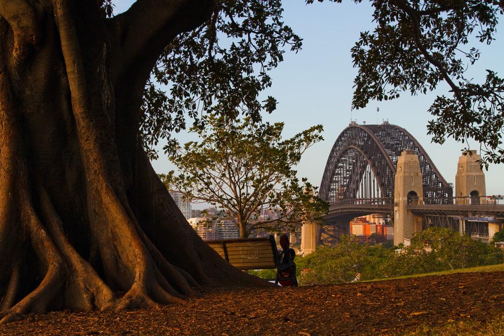 observatory hill sydney australia - photo#7