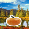 Sneaky Search Pumpkins