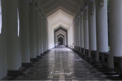 中正紀念堂の敷地内の通路