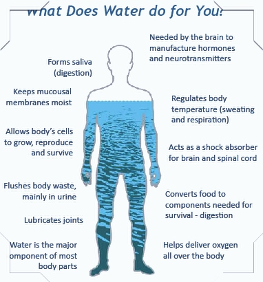 Why You Should Monitor Your Total Body Water?