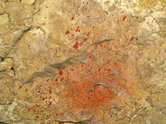 Paint splatter near some pictographs
