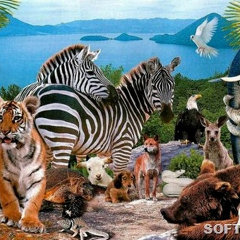 Происхождение названий животных