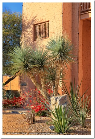 151231_Scottsdale_Jokake-Inn-Bell-Tower_0009